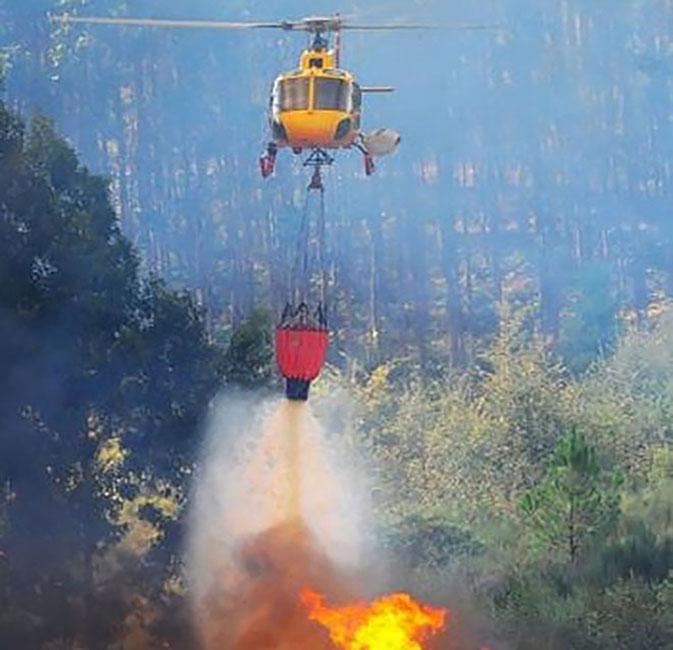 AF3 management of forest fires